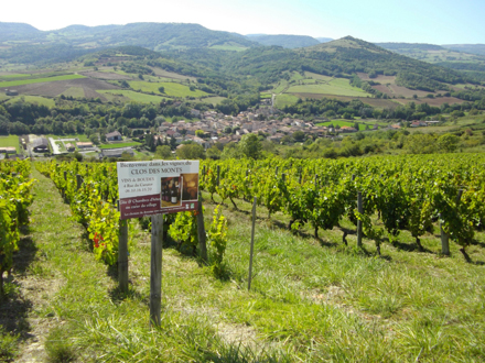 """The 560-meter-high Clos des Monts vineyard sits above the medieval village of Boudes. In the background is a chain of extinct volcanoes, the """"Chaîne des Puys."""""""