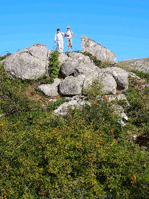 The 1,200m-high Coscione plateau in Corsica's interior is a spectacular landscape of huge granite boulders, undulating meadows filled with the fragrant maquis wild herbs, and the home of semi-wild horses, cows and pigs.